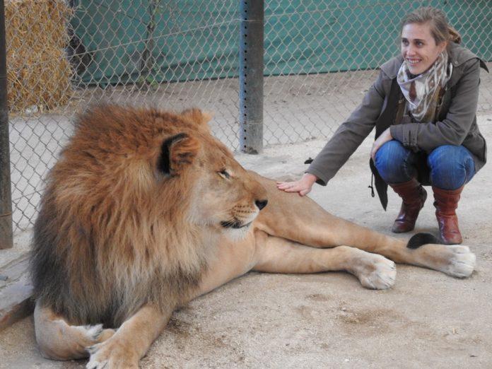 Vuelven a clausurar el zoo de Luján por permitir contacto de personas con animales