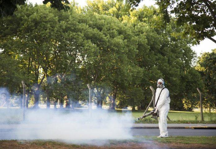 Dengue en la provincia: hubo un salto de casi 500 casos y llegan 1649