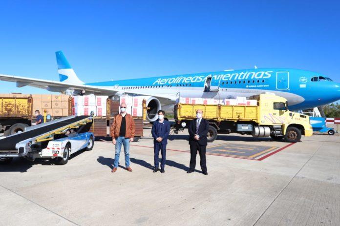 Gollan, Kicillof y Ceriani en Ezeiza junto al vuelo llegado de Shanghái.