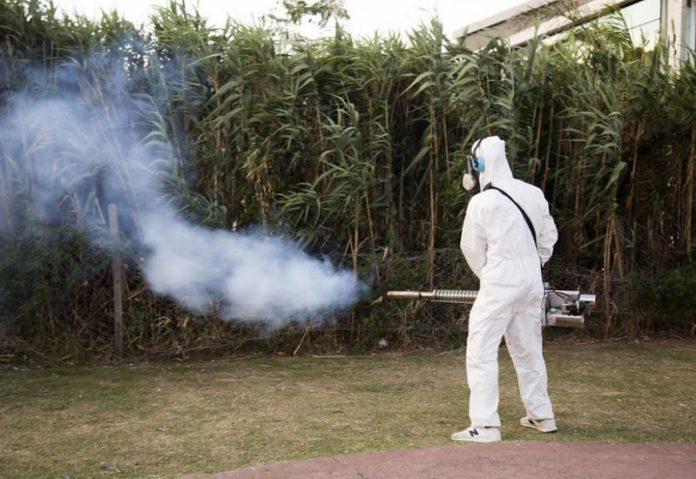 Operativos de fumigación contra el Aedes aegyptis en San Isidro