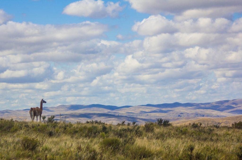 El Parque Provincial Ernesto Tornquist cuenta con 4.876 hectáreas protegidas.