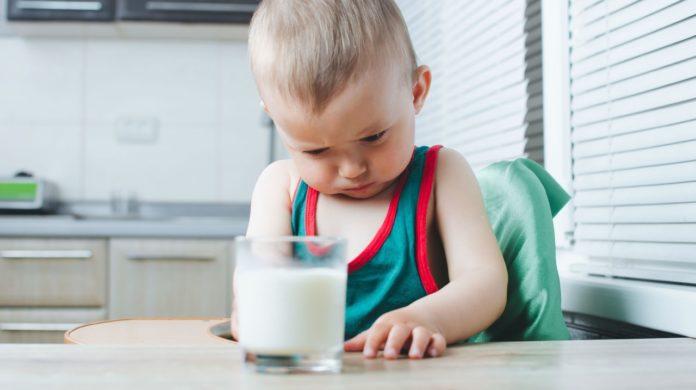 Se estima que la alergia a la proteína de la leche de vaca (APLV) afecta a 1 de cada 12 niños