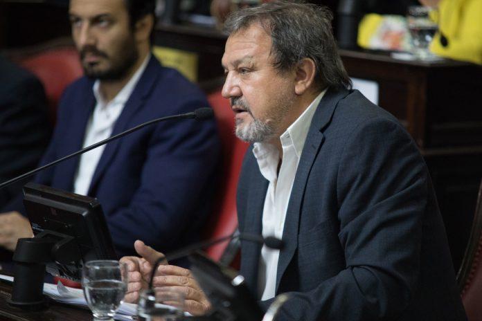 Senadores de Juntos por el Cambio buscan interpelar a Gollan por revisión de muertes