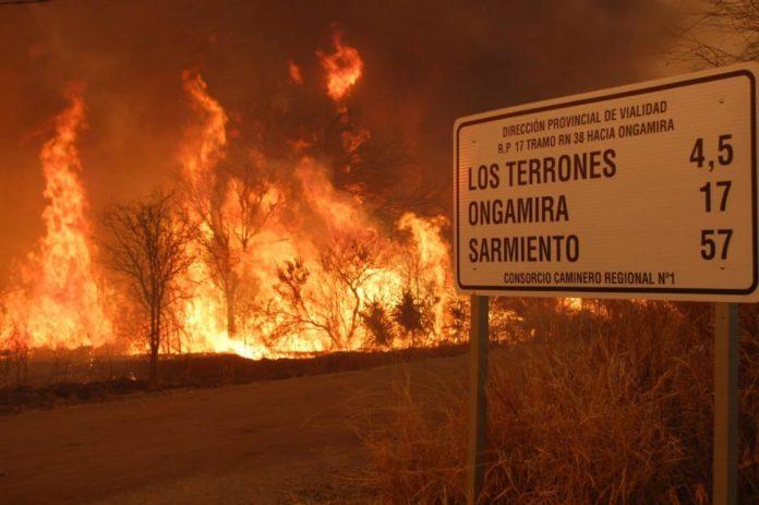 Incendios: Presentan proyecto para parar especulación inmobiliaria con las tierras