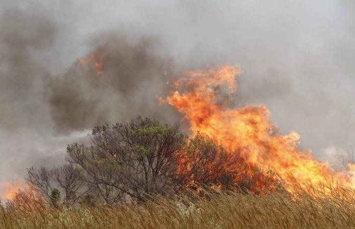 Incendios forestales en Sierra de Los Padres
