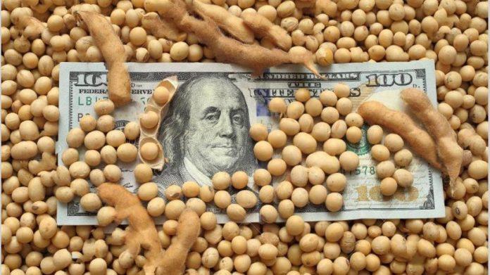 El gobierno lanza baja de retenciones y otras medidas para frenar al dólar