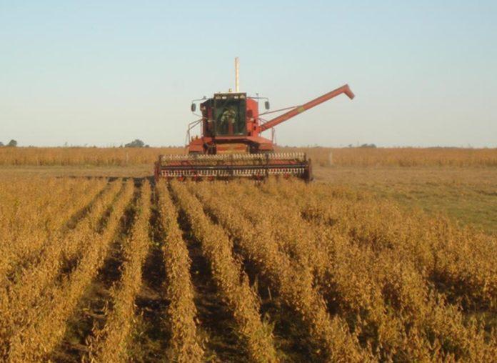 """El ministro de Desarrollo Agrario destacó que """"trabajamos desde el inicio muy cerca del agro""""."""