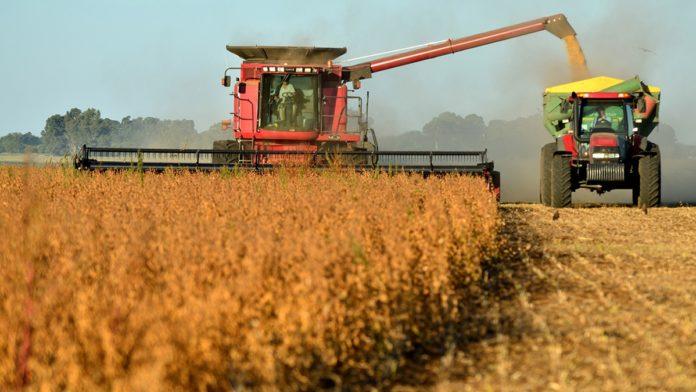 En qué consiste la ley de fomento a la agroindustria que presentó el Gobierno