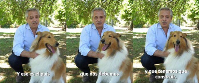Alberto Fernández y su mensaje para el país junto a su perro Dylan. (Twitter @alferdez)