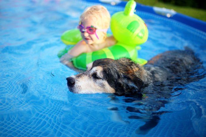 Se recomienda que los niños estén siempre bajo supervisión y con elementos de flotación en las piletas.