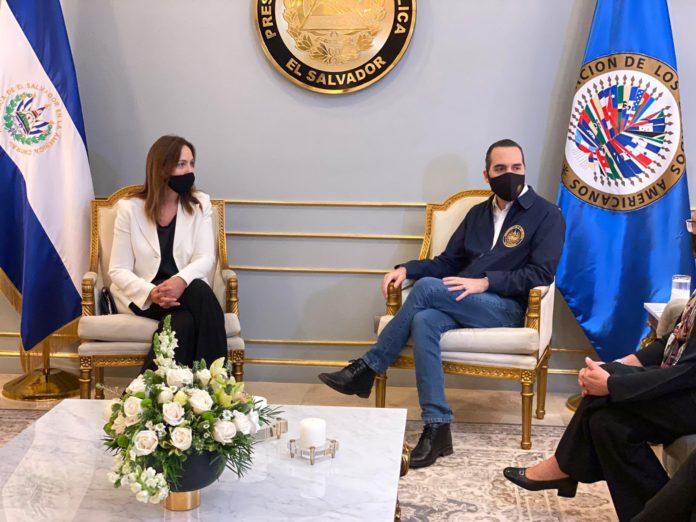 El Gobierno se quejó ante la OEA por la designación de Vidal en una misión electoral