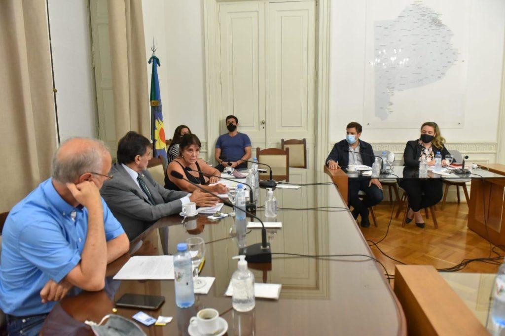 La presentación del proyecto en la Cámara baja de la Legislatura. (Prensa Gobernación)