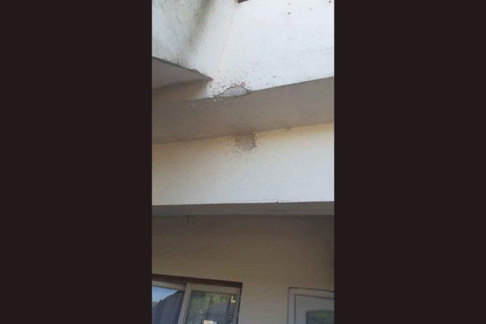 Las marcas de los disparos en el domicilio de Benítez. (0223)