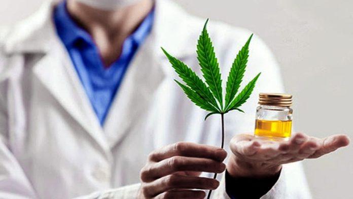 El Gobierno creó un registro para las personas que quieran acceder al cannabis medicinal