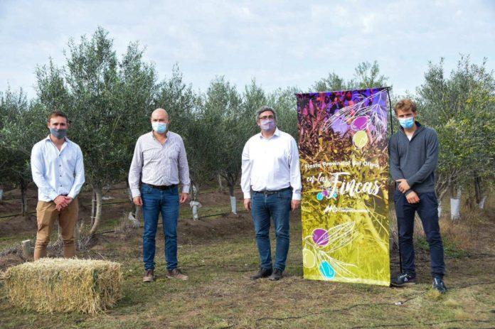 Fiesta del Olivo: Rodríguez destacó la calidad de la producción bonaerense