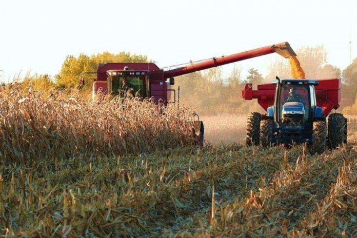 Crean programa para asesorar a productores agropecuarios en tecnología y economía