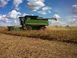 La actividad agropecuaria fue el principal factor de crecimiento de la economía bonaerense.