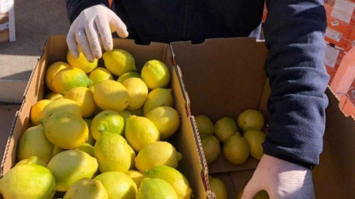 La Provincia presentó el Boletín Climático Codiseñado para el Sector Frutícola.
