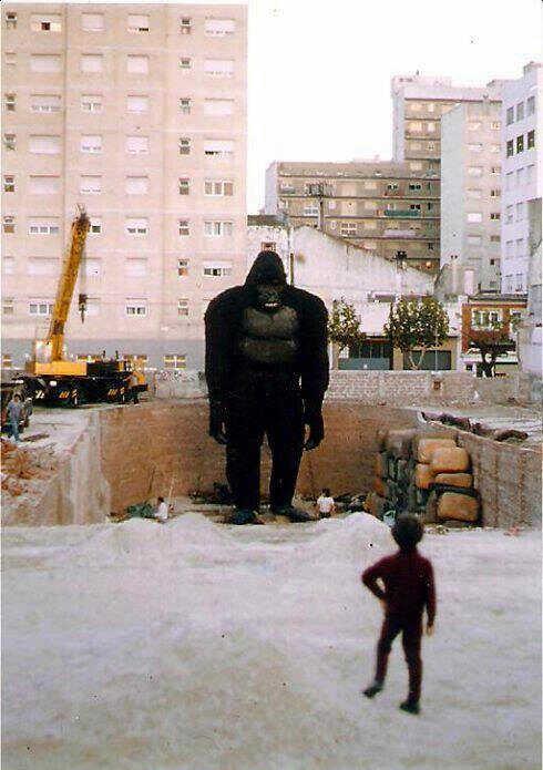 El muñeco de Kong en el pozo del ex Estadio Bristol. (Gentileza Fernando Soto Roland)